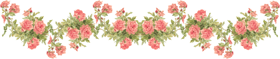 Wings of Whimsy: Peach Rose Border - Catherine Klein - PNG (transparent background) - free for personal use