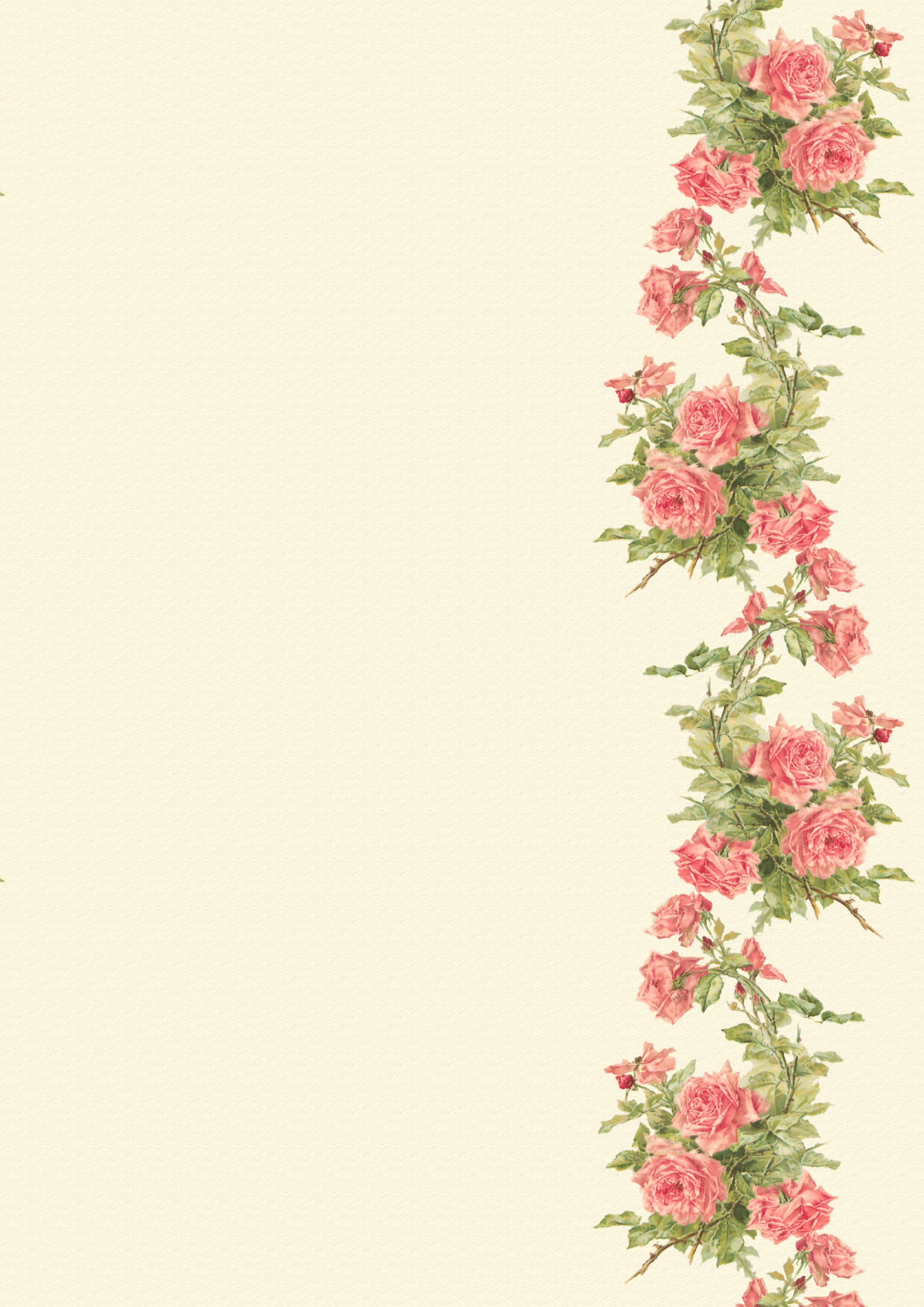 Catherine klein peach roses digital elements wings of - Peach rose wallpaper ...