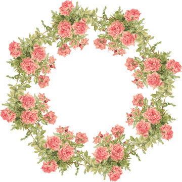 Wings of Whimsy: Peach Rose Wreath Frame - Catherine Klein - PNG (transparent background) - free for personal use