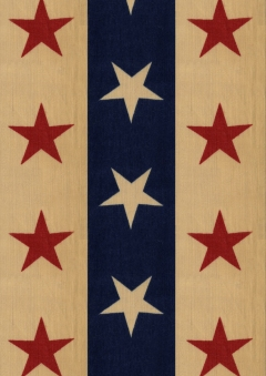Wings of Whimsy: 1890 Stars N Stripes - Printable Paper - free for personal use