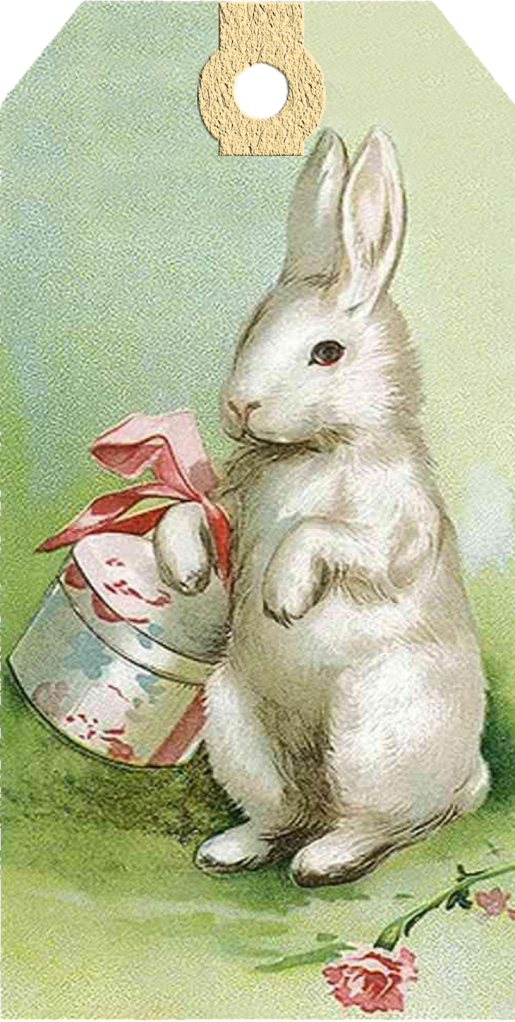 Playful image within printable bunny pictures