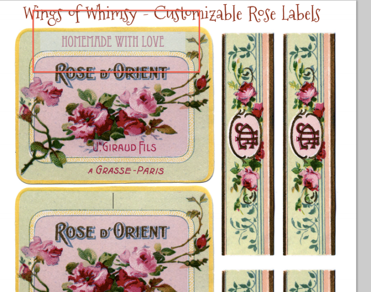 Wings of Whimsy: how to customize the text directly on the printable online before printing