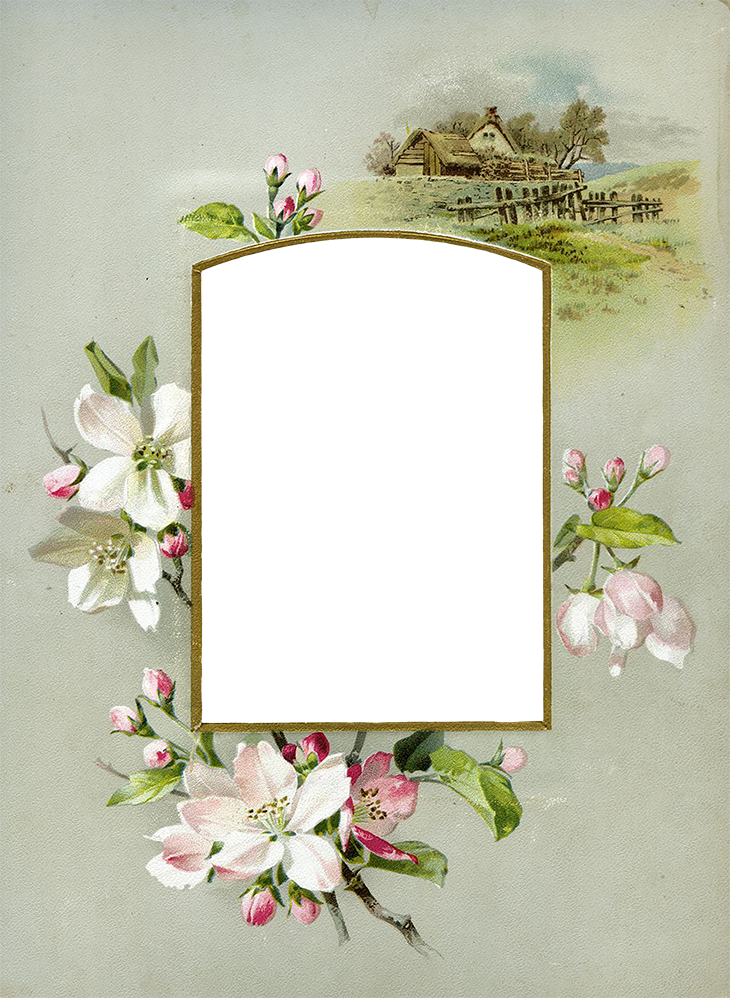 Wings of Whimsy: Die Cut Apple Blossom Album Mat PNG-file (transparent background) #vintage #ephemera #freebie #printable #valentine