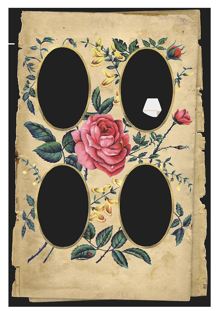 Wings of Whimsy: Rose Album Collage #vintage #ephemera #freebie #printable