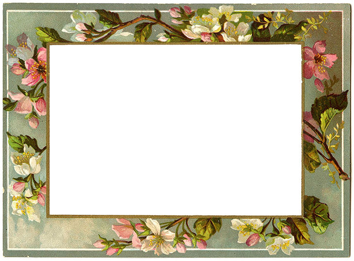 Wings of Whimsy: French Blossoms Frame #vintage #ephemera #freebie #printable #valentine