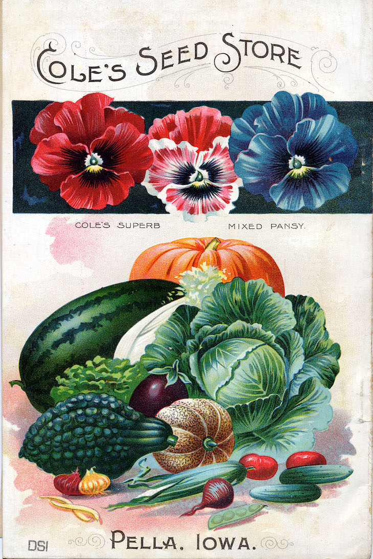 Wings of Whimsy: 1898 Cole's Seed Catalog Back #vintage #ephemera #freebie #printable #seed #catalog #garden