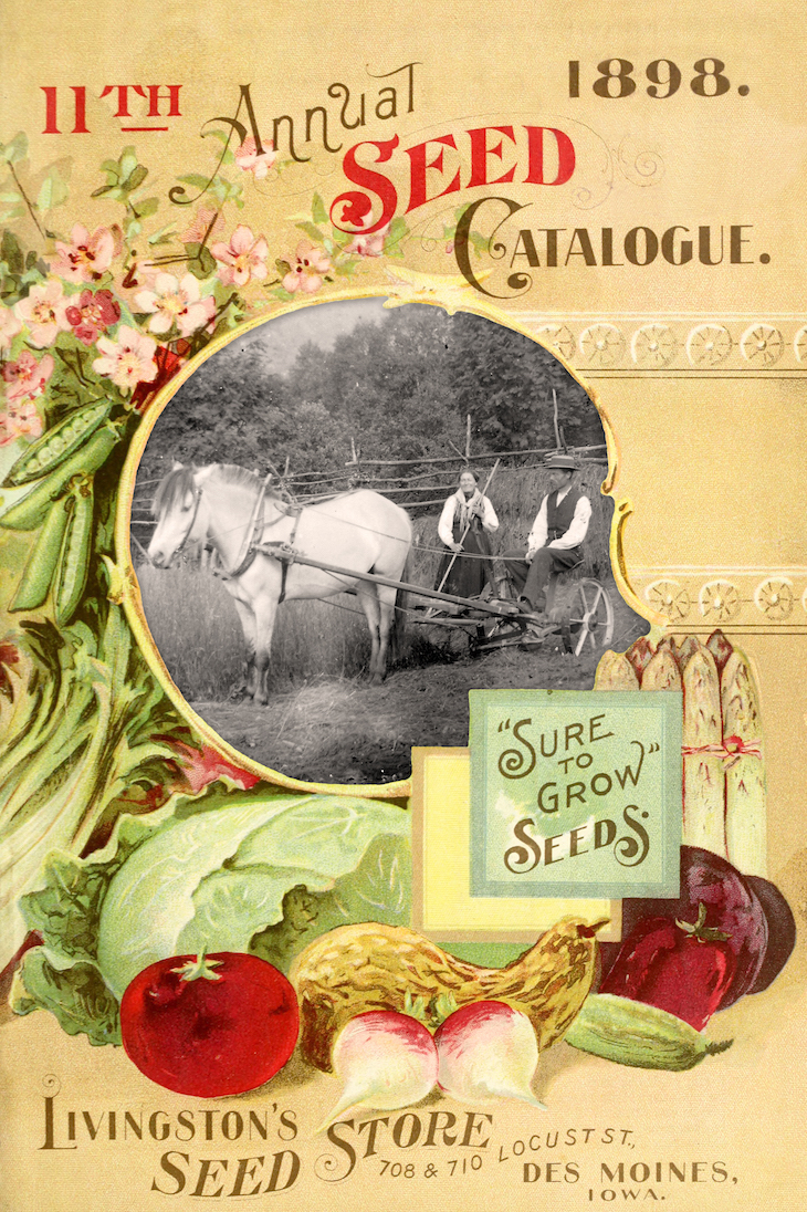 Wings of Whimsy: 1898 Livingstone's Frame #vintage #ephemera #freebie #printable #frame #seed #catalog #garden