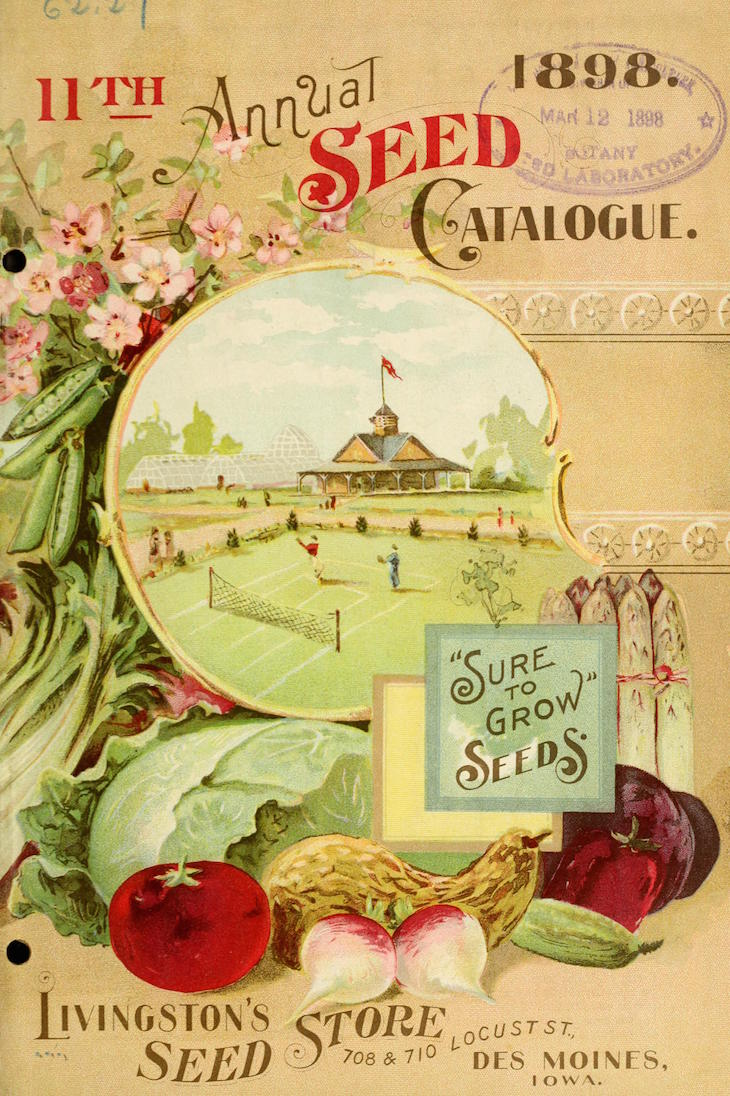 Wings of Whimsy: 1898 Livingston's Seed Catalog #vintage #ephemera #freebie #printable #seed #catalog #garden