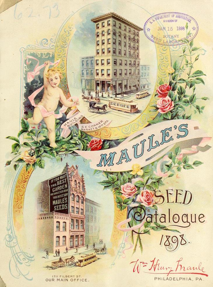 Wings of Whimsy: 1898 Maule's Seed Catalog #vintage #ephemera #freebie #printable #seed #catalog #garden