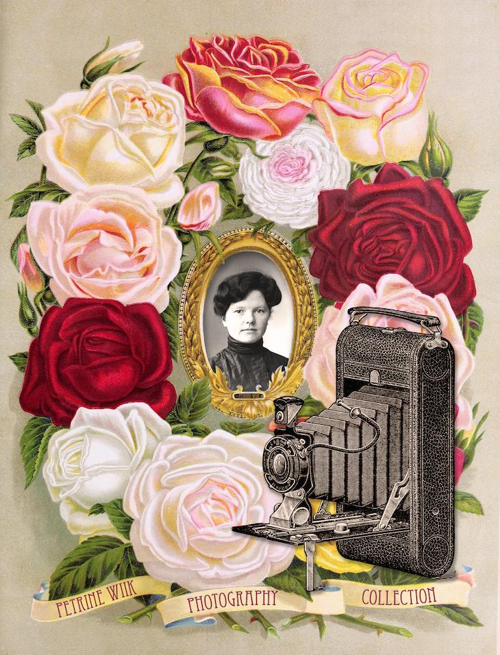 Wings of Whimsy: 1900 Henderson Frame Petrine Wiik Collection #vintage #ephemera #freebie #printable #frame #seed  #catalog #petrine #wiik #collection