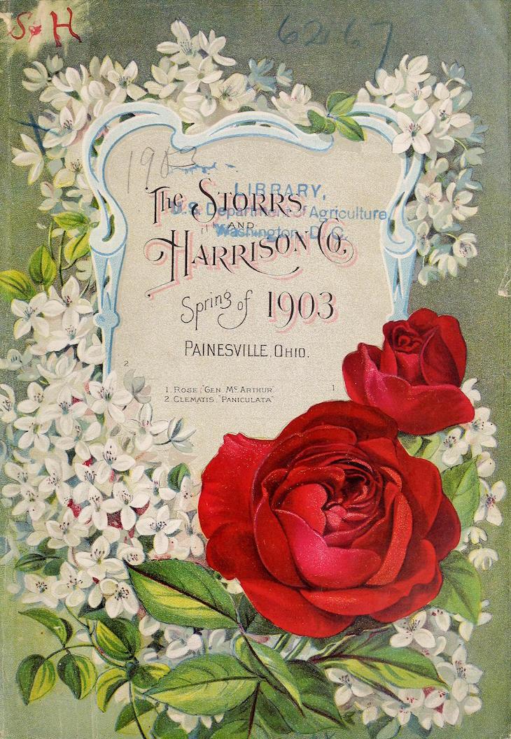Wings of Whimsy: 1903 Storrs Harrison Spring Catalog #vintage #ephemera #freebie #printable #frame #seed #garden #catalog