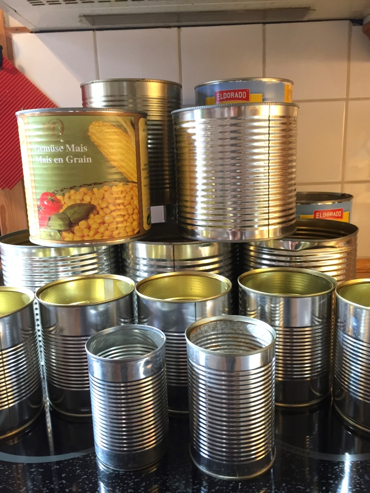 Wings of Whimsy: Empty Cans