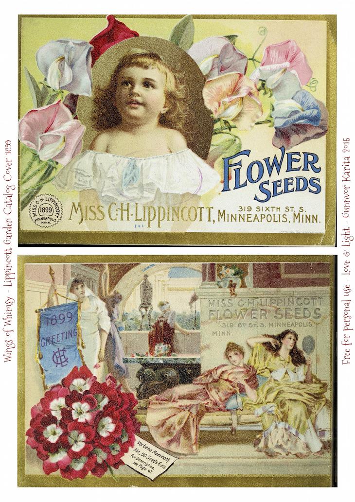 Wings of Whimsy: 1899 Lippincott Seed Catalog #vintage #epehemera #freebie #printable #seed #catalog