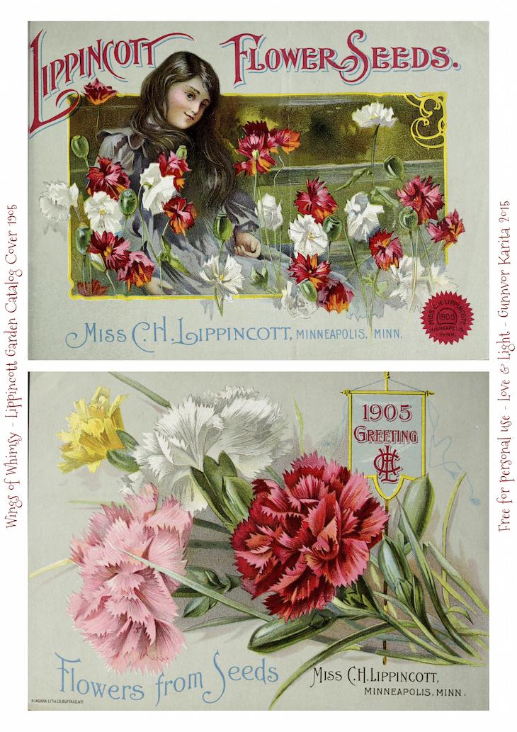 Wings of Whimsy: 1905 Lippincott Seed Catalog #vintage #epehemera #freebie #printable #seed #catalog