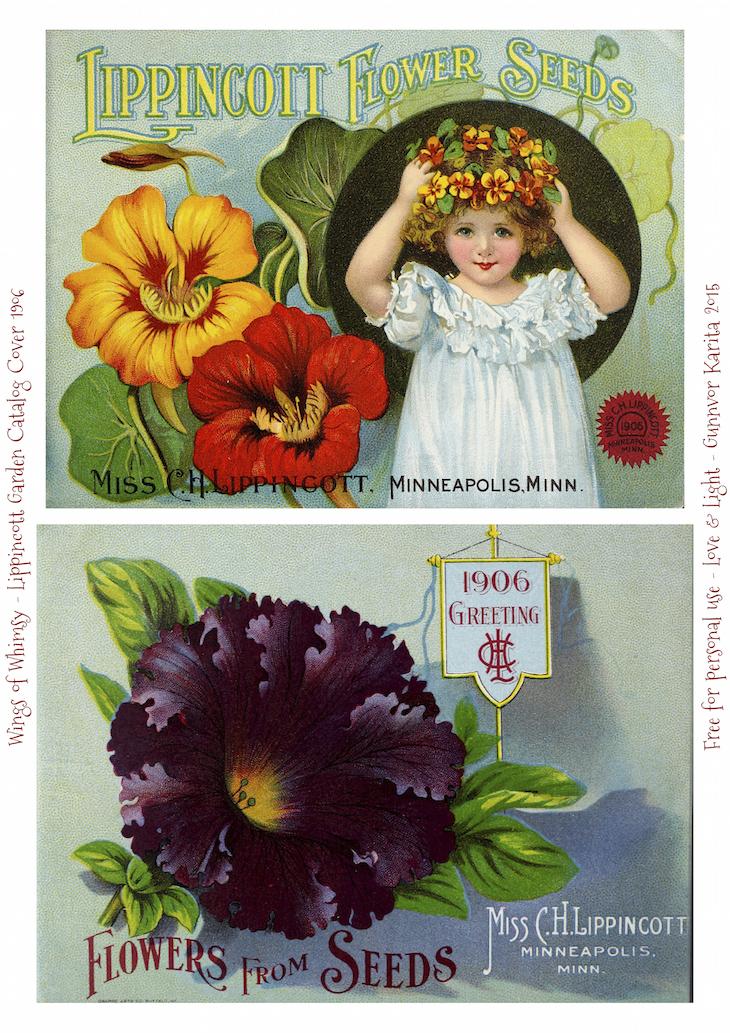 Wings of Whimsy: 1906 Lippincott Seed Catalog #vintage #epehemera #freebie #printable #seed #catalog