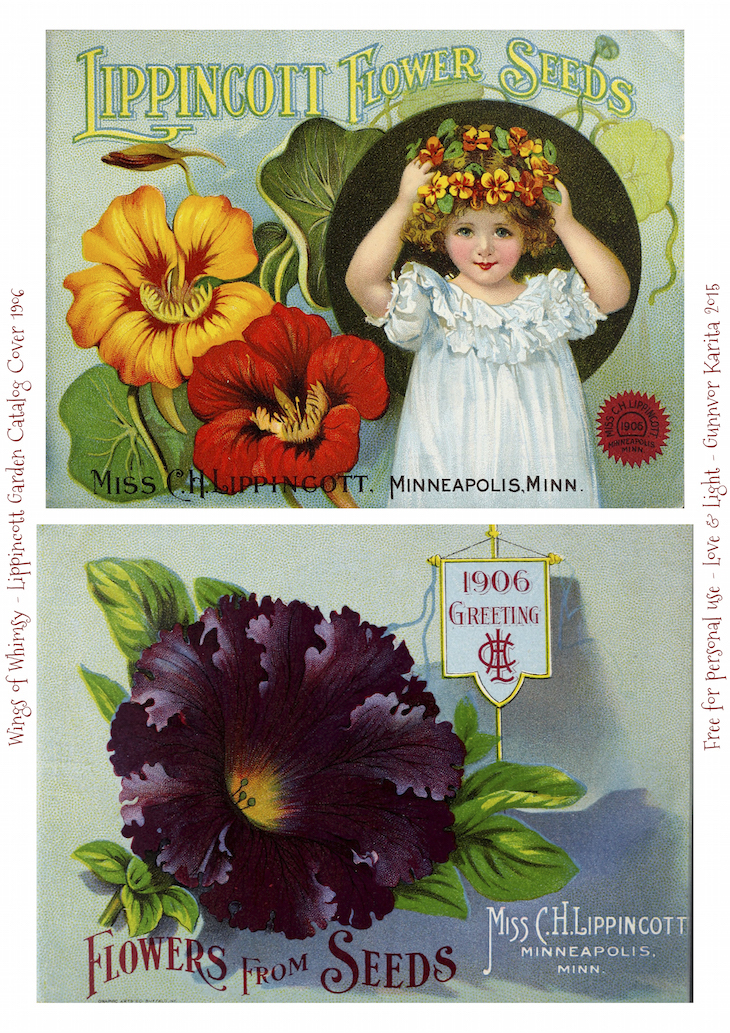 Wings of Whimsy: 1906 Lippincott Seed Catalog #vintage #epehemera #freebie #printable #seed #catalog
