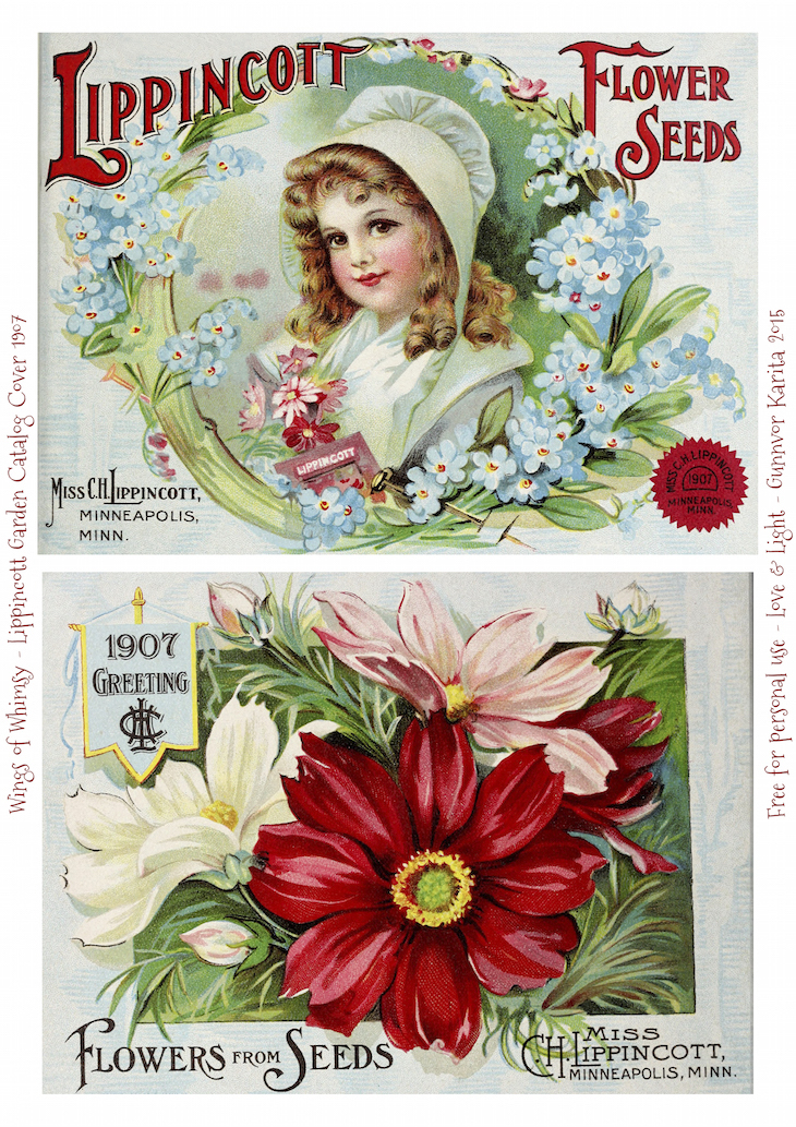 Wings of Whimsy: 1907 Lippincott Seed Catalog #vintage #epehemera #freebie #printable #seed #catalog