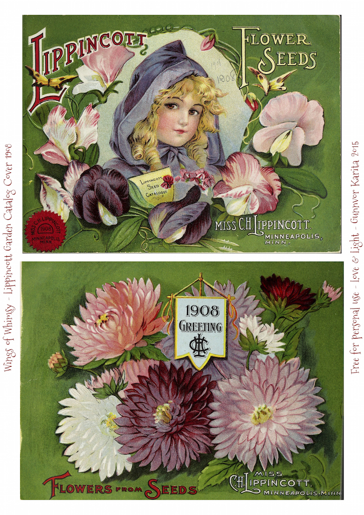 Wings of Whimsy: 1908 Lippincott Seed Catalog #vintage #epehemera #freebie #printable #seed #catalog