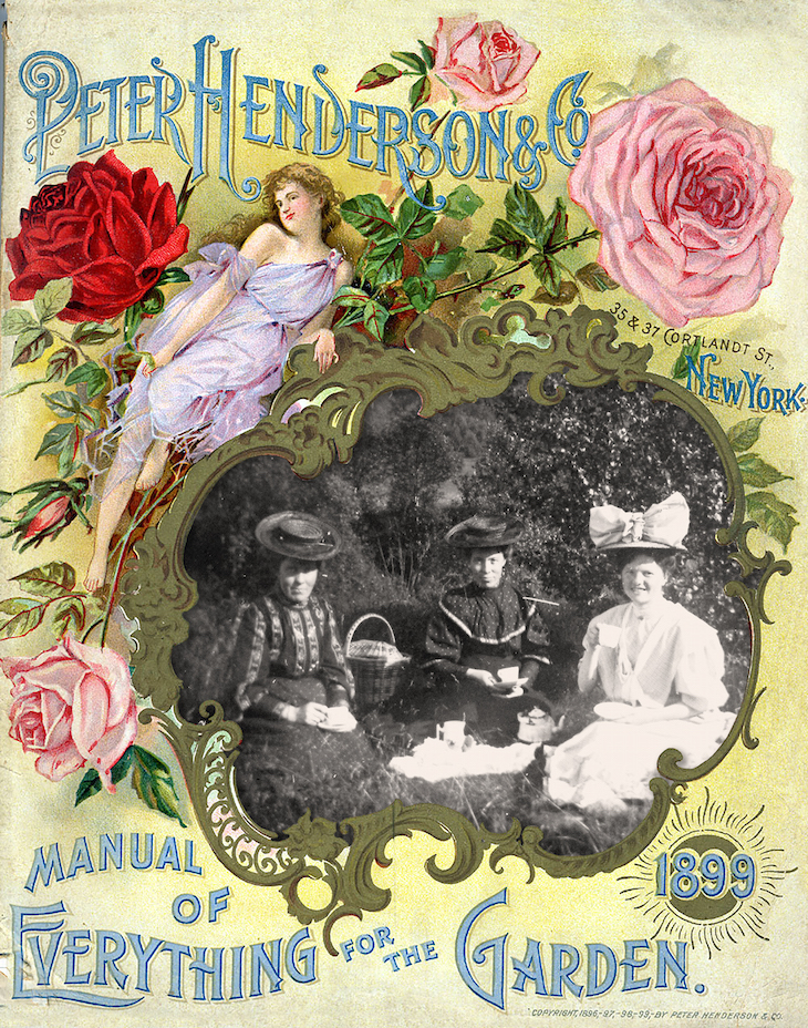 Wings of Whimsy: Belle Epoque Picnic - Petrine Wiik Collection #vintage #ephemera #photo #belle #epoque #freebie #printable