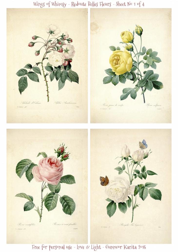 Wings of Whimsy: Redoute Belles Fleurs Sheet No 1 of 4 #vintage #ephemera #freebie #printable #redoute #roses