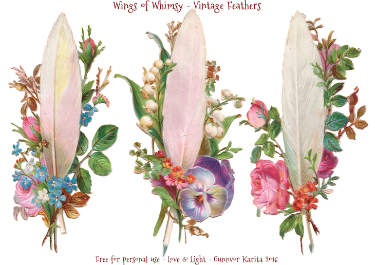 Wings of Whimsy: Vintage Feathers #freebie #vintage #ephemera #printable #feather