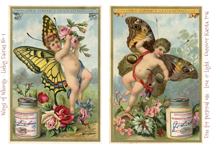 Wings of Whimsy: Liebig Faries No1 #freebie #vintage #ephemera #printable #liebig #fairy #cherub #butterfly