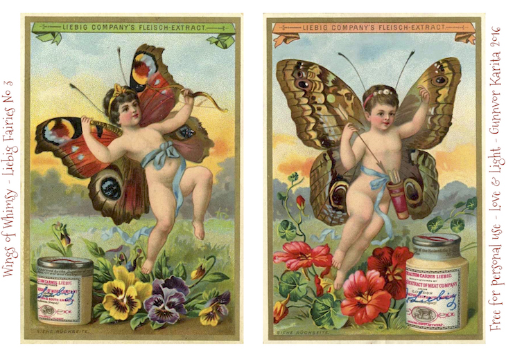Wings of Whimsy: Liebig Faries No1 #freebie #vintage #ephemera #printable #liebig #fairy #cherub #butterfly kopi
