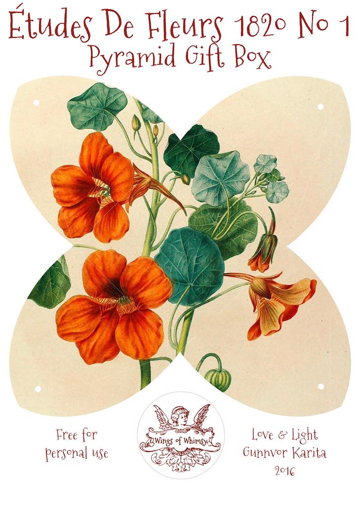 Wings of Whimsy: Études des Fleurs No1 ca 1820 - Pyramid Gift Box #antique #freebie #printable #pyramid #gift #box
