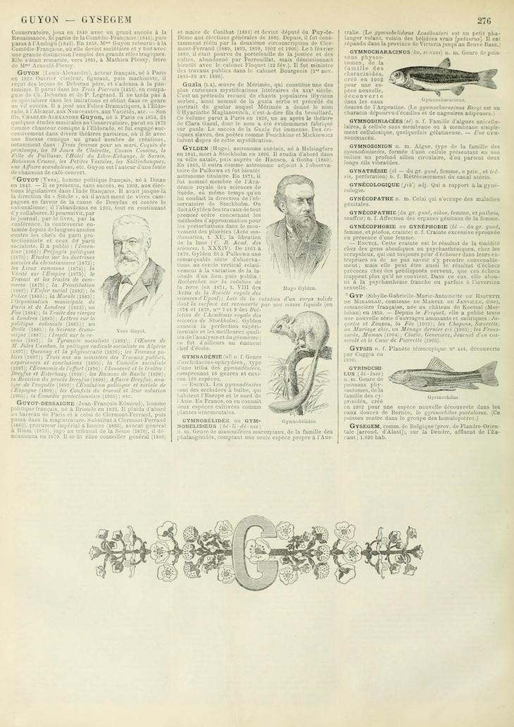 Wings of Whimsy: Noveau Larousse Illustré - G #vintage #french #dictionary #alphabet #capital #initial