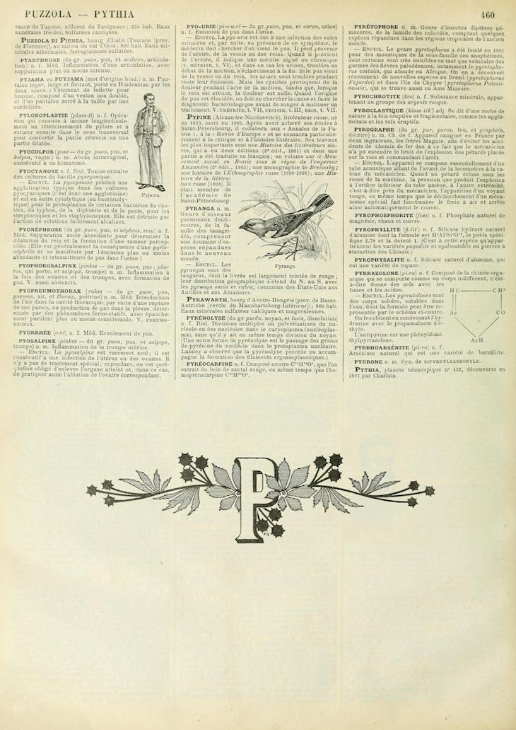 Wings of Whimsy: Noveau Larousse Illustré - P #vintage #french #dictionary #alphabet #capital #initial